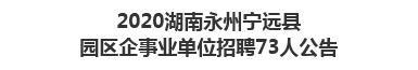 2020湖南永州宁远县园区企事业单位招聘73人公告