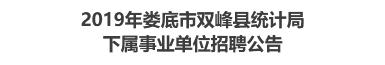 2019年娄底市双峰县统计局下属事业单位招聘公告